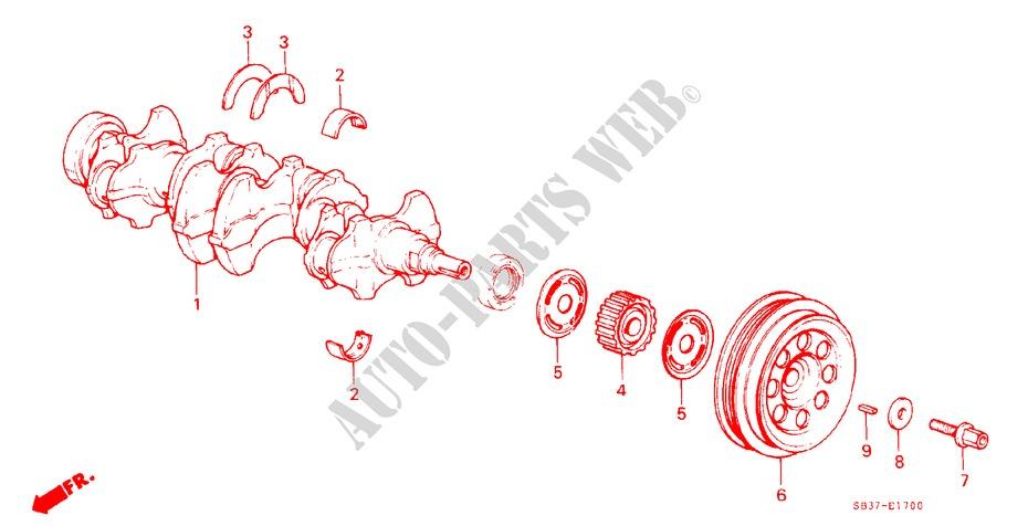 ClipsOne 25 Pcs Nylon Nut #10 Screw Size for Mitsubishi Toyota Doitnow