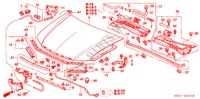 ENGINE HOOD (RH) for Honda Cars ACCORD 2.2 EXECUTIVE 4 Doors 5 speed manual 2005