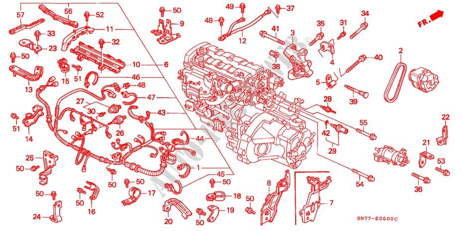 1996 Honda Accord Engine Wiring Harnes